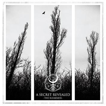 A Secret Revealed The Bleakness CD