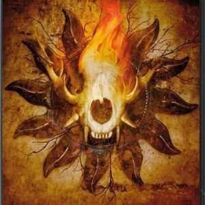 Amorphis - Forging The Land Of Thousand Lakes (2DVD)