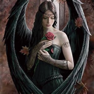 Anne Stokes Angel Rose Juliste