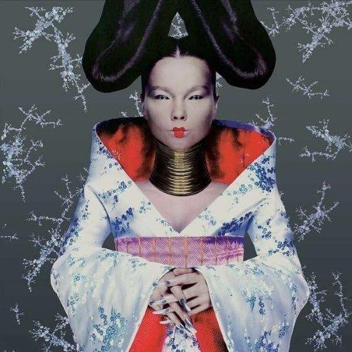 Björk - Homogenic (180 Gram)