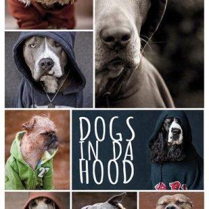 Dogs In Da Hood Juliste