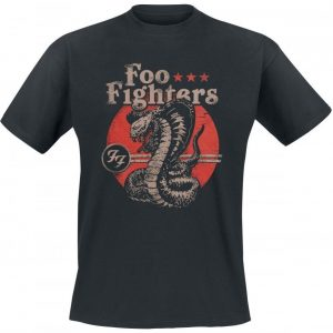 Foo Fighters Snake T-paita