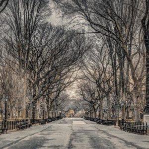 Frank Assaf New York Central Park Juliste