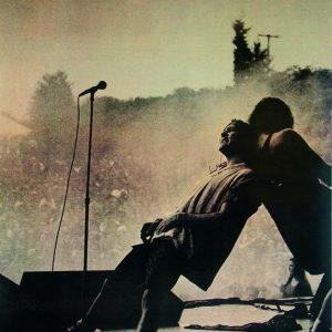 Pearl Jam Eddie Vedder & Mike Mccready On Stage Juliste Monivärinen