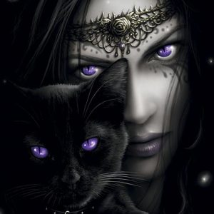 Spiral Cats Eyes Seinälippu