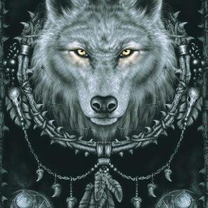 Spiral Wolf Dream Seinälippu