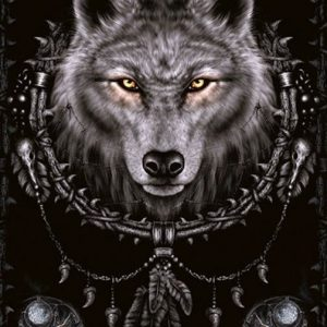 Spiral Wolf Dreams Juliste