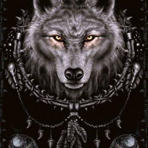 Spiral Wolf Dreams Juliste