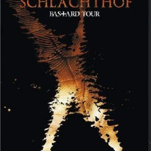 Subway To Sally Schlachthof DVD