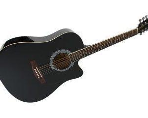 Teräskielinen akustinen kitara