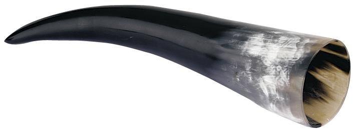 Viikinkijuomasarvi 0